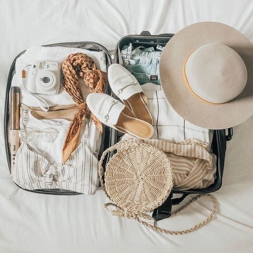 suitcase | Hello flores