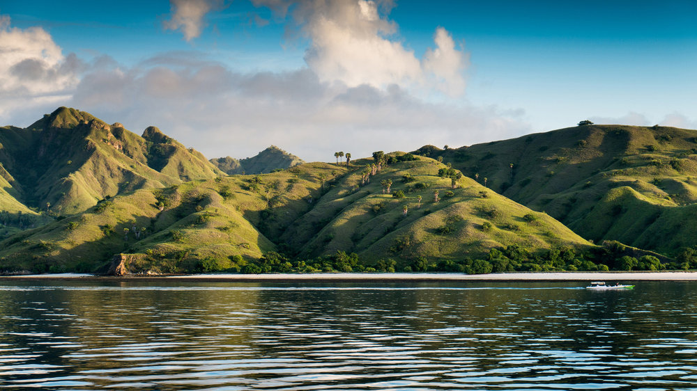 The legendary Komodo Island makes people around the world curious to visit | Hello flores
