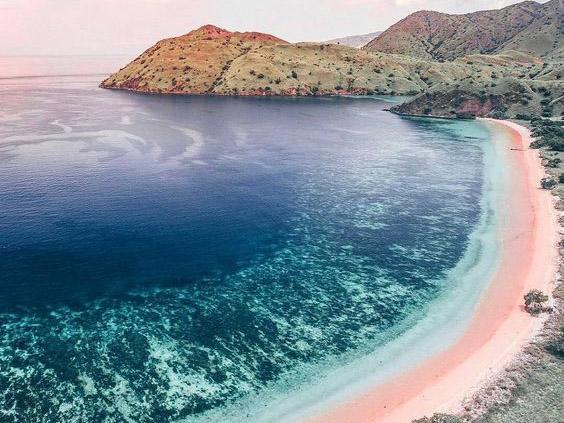 Pink Beach | Hello flores