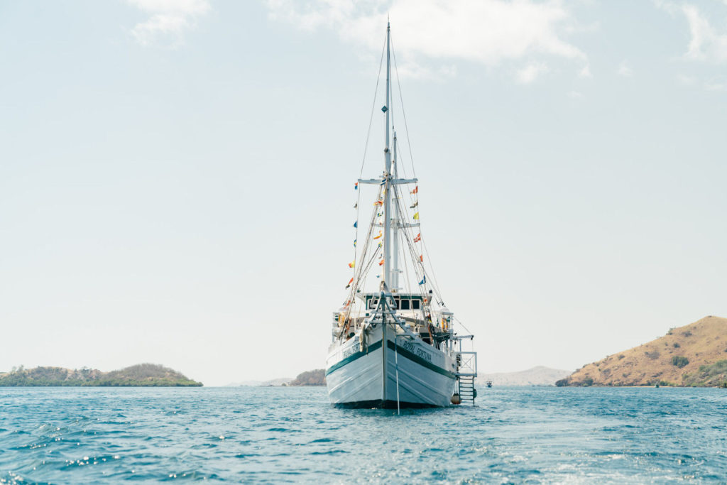 Royal Fortuna Liveaboard Expedition to Amazing Station | Hello Flores