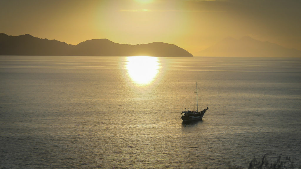 Wisesa Liveaboard Exploring the World's Best | Hello Flores