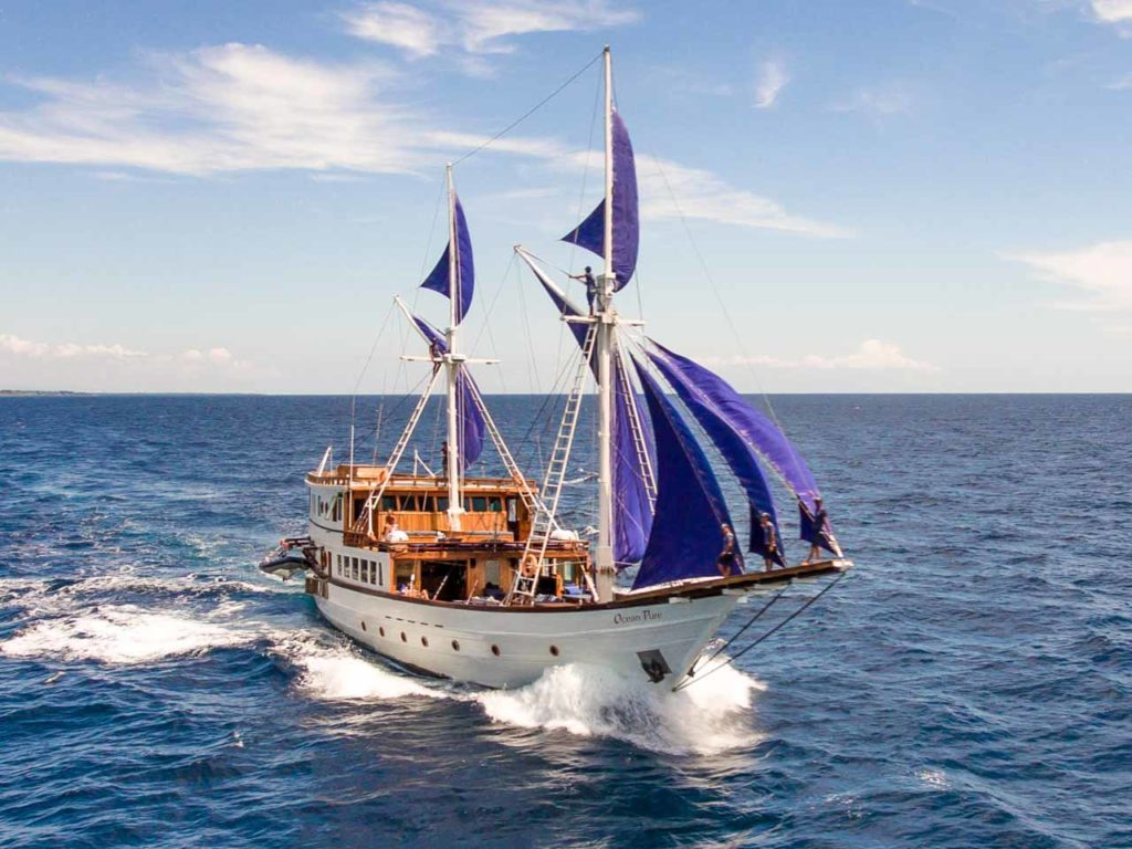Ocean Pure Liveaboard Sailing to Paradise | Hello Flores