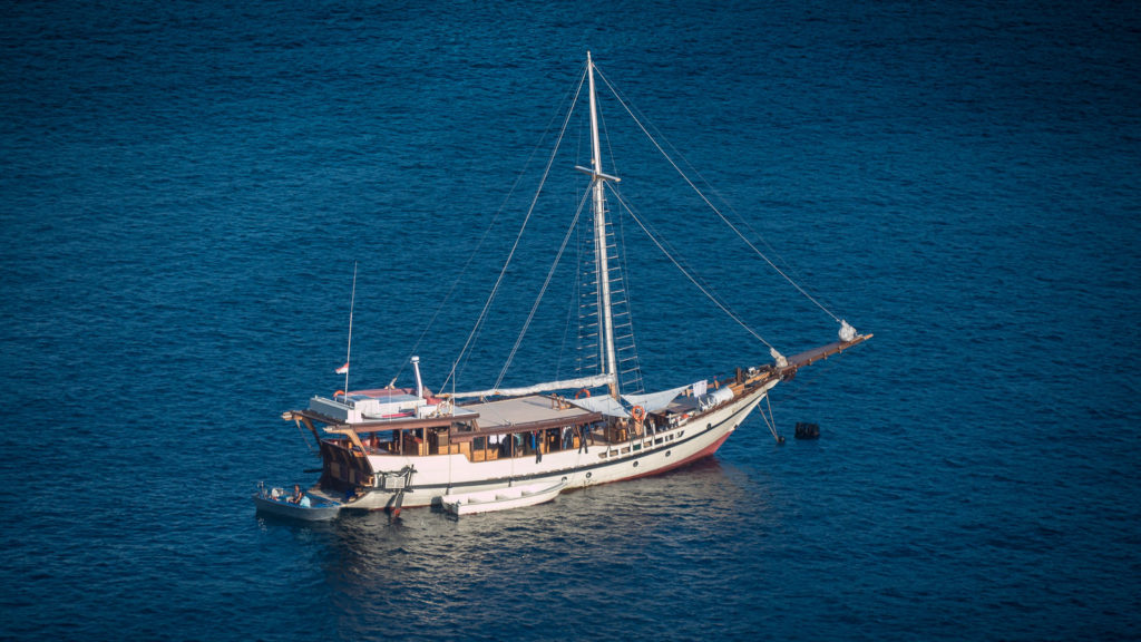 Wisesa Liveaboard in Center of Blue | Hello Flores