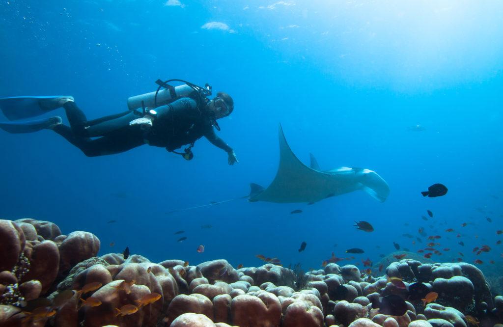 Scuba Diving | Hello Flores