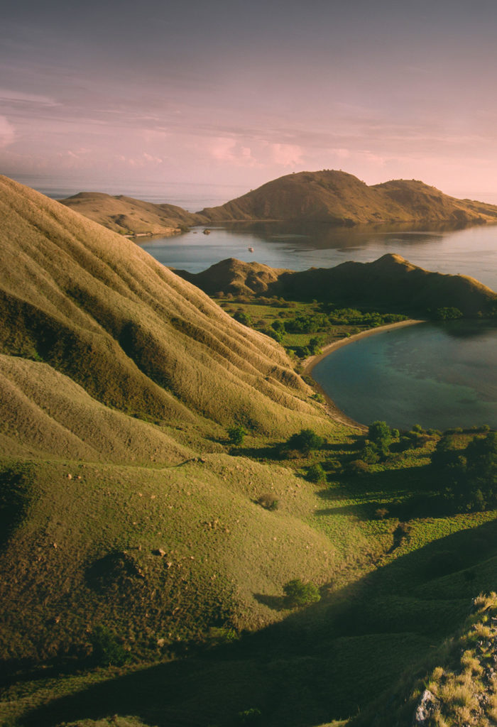 Your Travel Guide to Plan A Smooth Trip to Komodo | Hello Flores