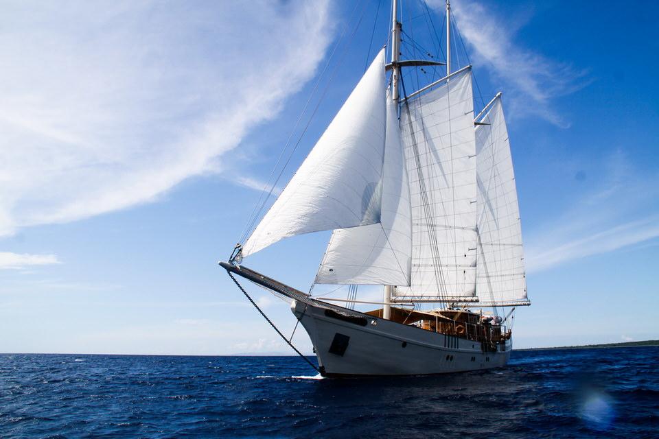 Mutiara Laut Liveaboard Vast Ship | Hello Flores